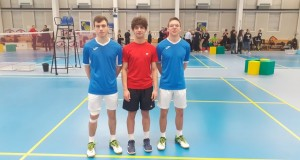 badminton-ecde9d5cef83ca0b874a0681800e3ff3_view_article_new